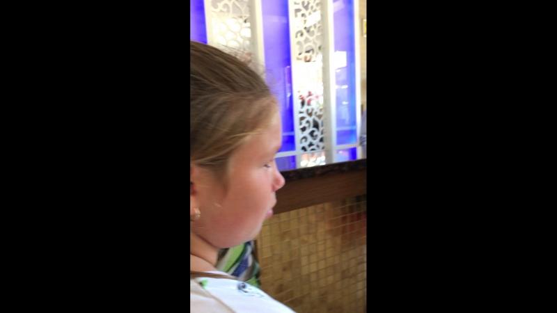 В отель Eftalia aqua resort иностранцев заселяем а русские пусть в холе спят с маленькими детьми