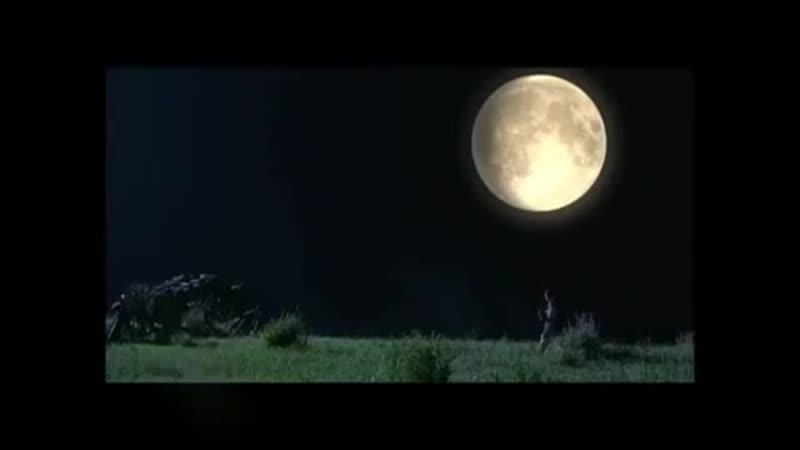 V жумонг клип mp4