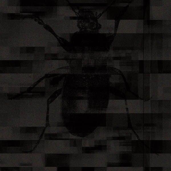 Kontext - Dysphoria artwork