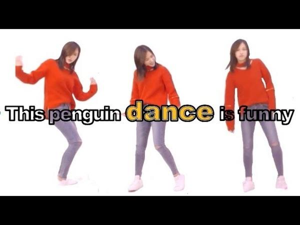 TWICE MINA 看這隻企鵝跳舞會中毒