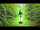 Эфирное масло лемонграсса Свойства и применение