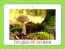 Грибы - Учебные Карточки Домана для детей №22