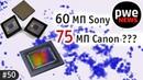 PWE News 50 | 60MП от Sony, 75МП от Canon, цена ФФ Panasonic
