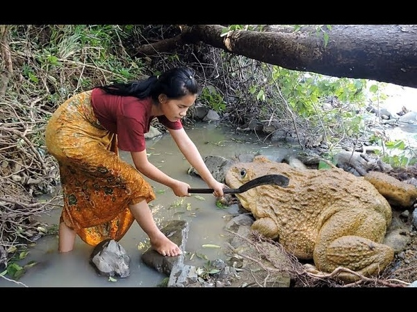 Pretty girl Find frogs cooking on rock Pretty girl Grilled Frog eating delicious