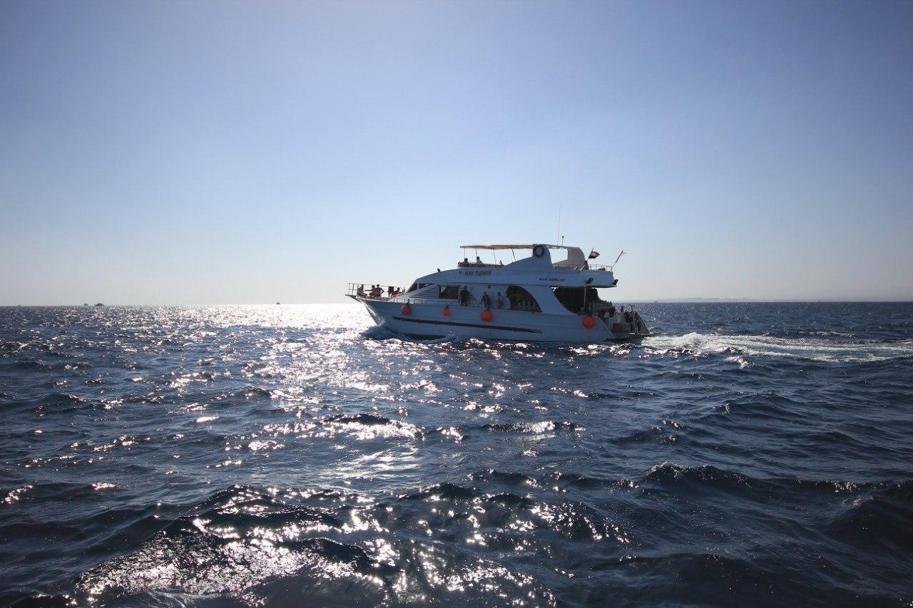 Open water diving AuSjO26H4c8