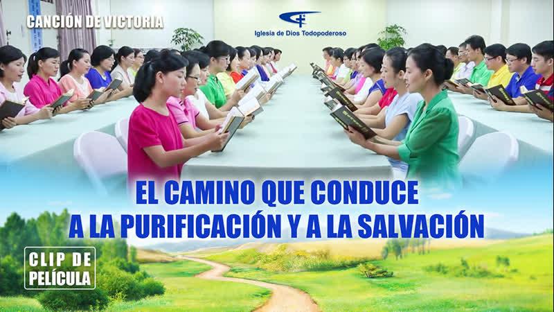 Canción de victoria (VI) - El camino que conduce a la purificación y a la salvación
