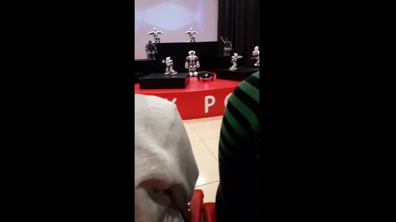 шоу танцующих роботов