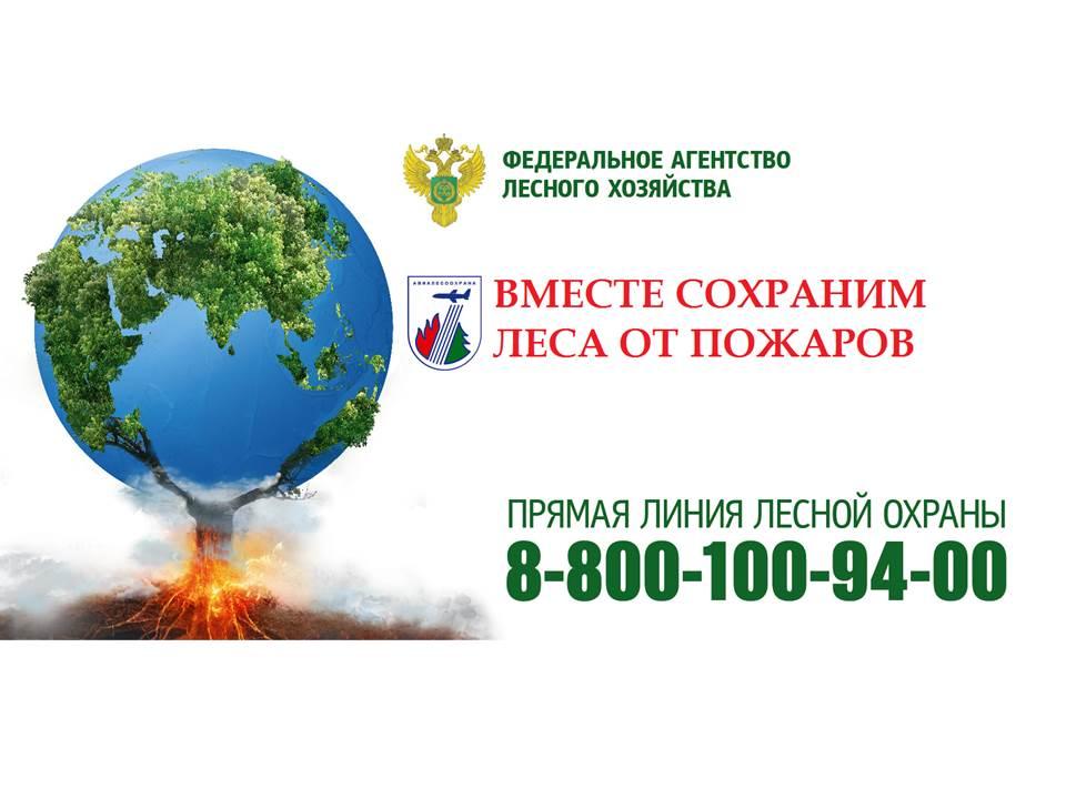 В предстоящие выходные дни, 15 и 16 сентября, в 66 регионах России прогнозируются средний, высокий классы пожарной опасности в лесах по условиям погоды