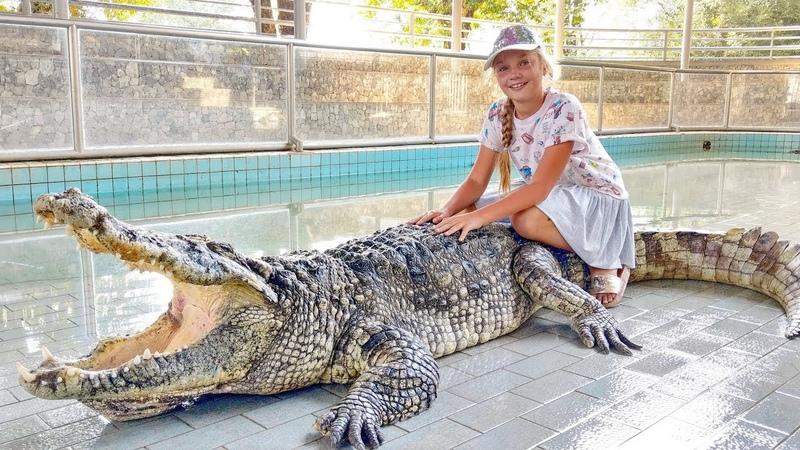 ЧЕЛЛЕНДЖ 🐊 Не накорми крокодила за 60 секунд Юника и папа дразнят 200 голодных крокодилов