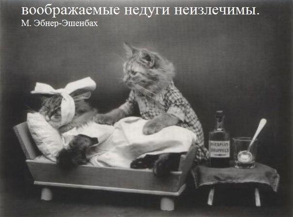 Фото №456265173 со страницы Тани Рыженковой
