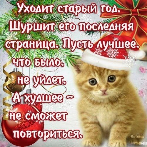 Фото №394663962 со страницы Ayna Khammaeva
