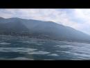 В поисках дельфинов Страна Души Волшебная Абхазия