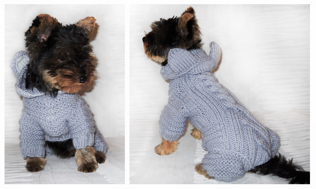 Одежда для собак своими руками видео фото