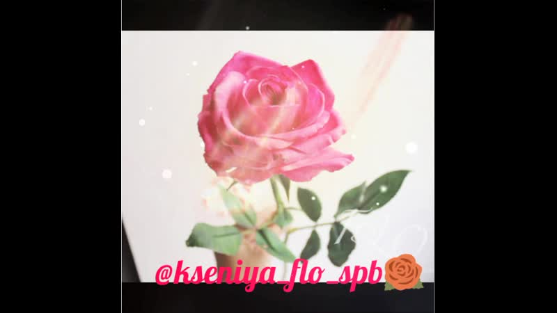 @kseniya_flo_spb🌹 Роза Топаз (Topaz)