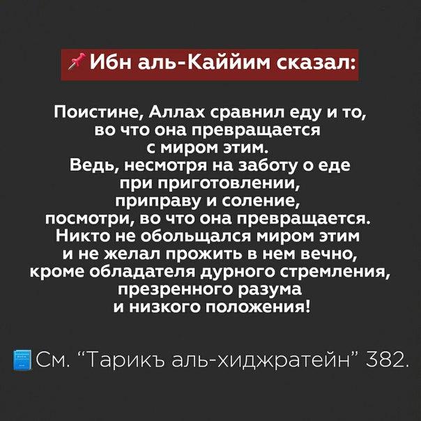 Фото №456243667 со страницы Амира Алханова