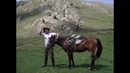 Мой Боевой Конь в горах Хевсуров, грозных и бесстрашных горцах