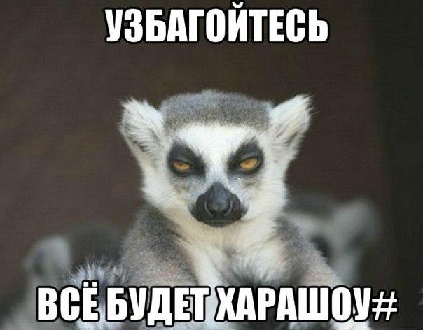 -dgFyx9a958.jpg