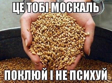Онищенко советует не обольщаться по поводу его увольнения: Фантазии неуместны - Цензор.НЕТ 9512