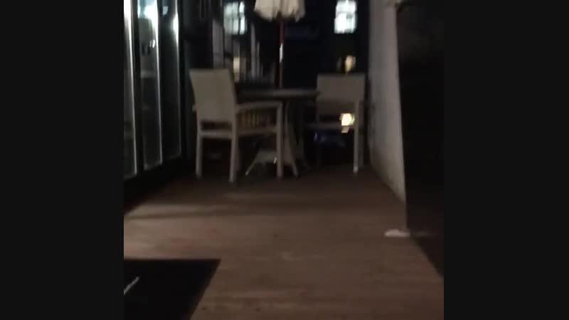 вход в кафе/ ноябрь 2018