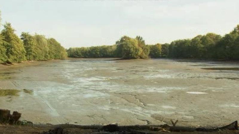 Правосудие прежде всего! В Германии полицейские откачали озеро, чтобы найти улики