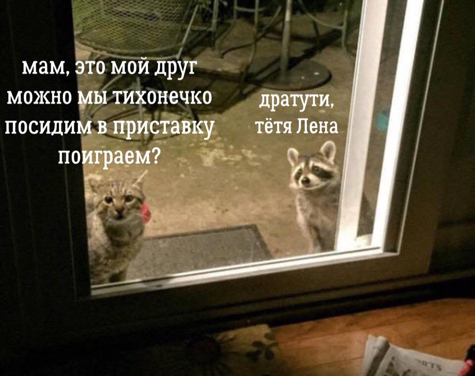 UMHLxXA62yY - Дратути, тетя Лена...
