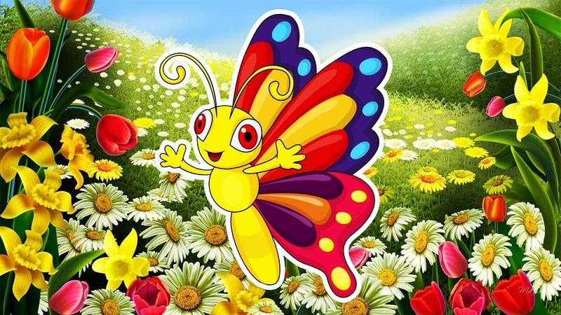 Мультик о БАБОЧКАХ 🦋🌸🦋 Самые красивые БАБОЧКИ для детей и их родителей 🌺 Бабочки для малышей
