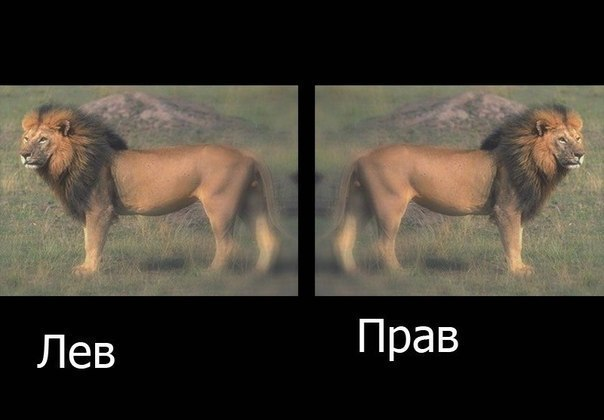 Евгений Каблуков, Тюмень - фото №15