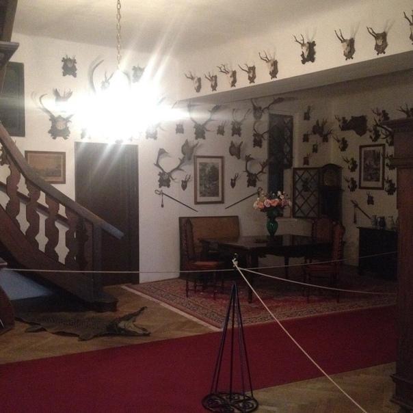 ИСТОРИЯ РОДА ШТЕРНБЕРГОВ Фото из замка Чешский Штернберг. Наши дни .Замок находится в частном владении.Графская династия Штернбергов является одной из самых старинных аристократических семей