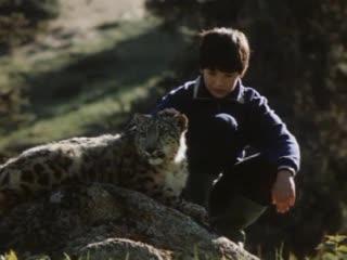 Тигр снегов (СССР, 1987)