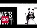 Защитники зверей творят зверства над людьми скандал вокруг фонда WWF - Россия 24