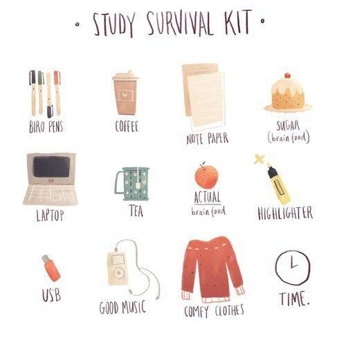 набор по выживанию на учёбе • ручки • кофе • бумага для заметок • сахар • ноутбук • чай • еда для мозга • маркер • флешка • хорошая музыка • удобная одежда •