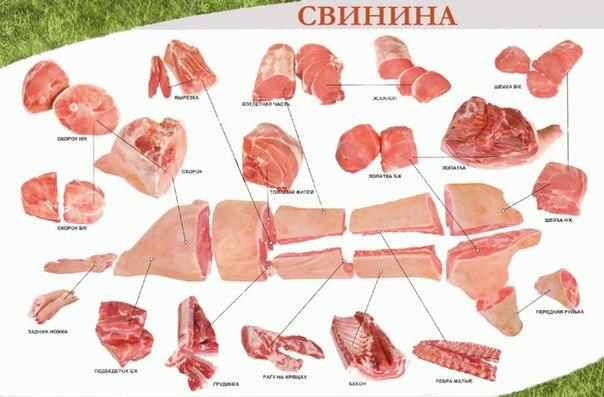Схема разделки СВИНИНЫ.