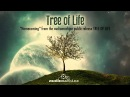 Homecoming - Music from the audiomachine public release TREE OF LIFE