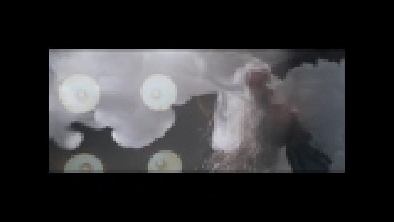 MAHARAJA SMOKE1
