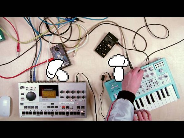 010 :: Elektron Machinedrum Teenage Engineering PO-24 Arturia Microbrute Korg Miku Stomp