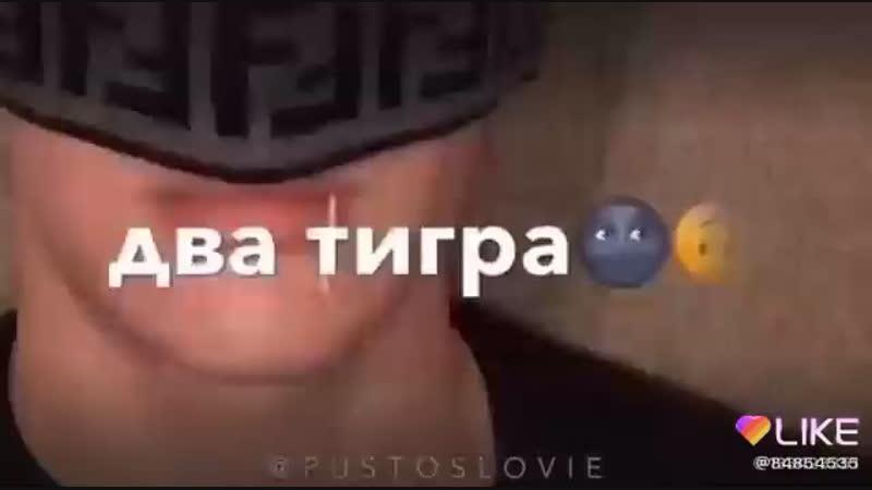 P U S T O S L O V I E🐯❤️