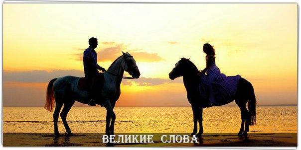 Фото №456249267 со страницы Vladislav Gunko