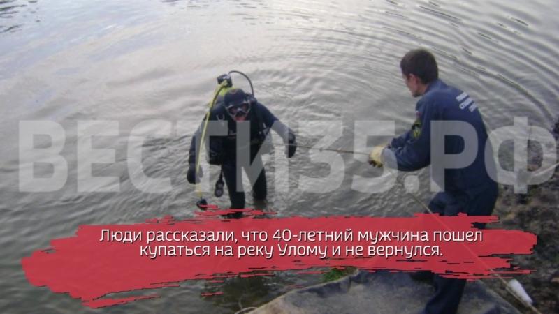 В Череповецком районе утонул 40-летний мужчина
