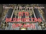 Потрясающая музыка!! И С Бах. Орган. Токката I.S. Bach Organ Requiem