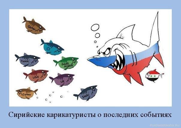 http://cs309824.vk.me/v309824556/872b/3xyH0e7cTzA.jpg