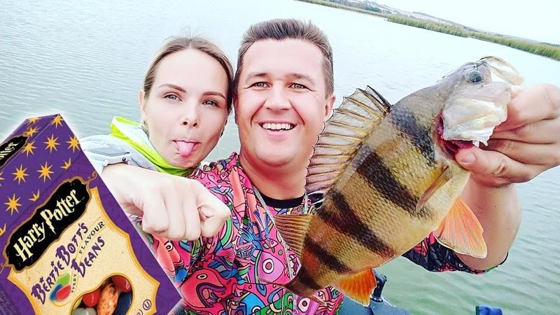 Кто меньше поймает ест - Бобы Гарри Поттера ЧЕЛЛЕНДЖ. Рыболовный батл с женой! Ловля окуня осенью!