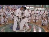 Уроки каратэ. Подготовительные упражнения для удара лоу-кик от Хадзимэ Казуми (Hajime Kazumi)