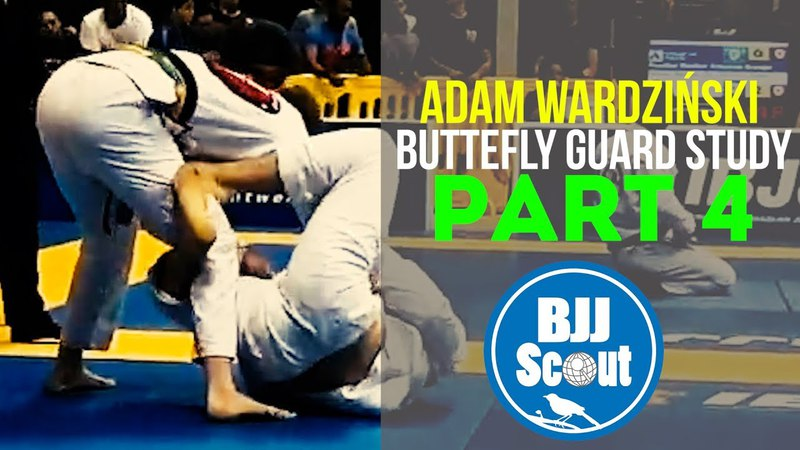 Butterfly Guard Study Part 4 - Standers