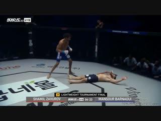Шамиль Завуров vs. Мансур Барнауи страшный нокаут