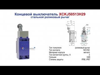 XCKJ50513H29 Концевой выключатель, стальной роликовый рычаг, Telemecanique / Schneider Electric