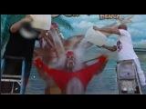 Hulk Hogan ALS Ice Bucket Challenge
