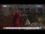 Московская Борзая 2 сезон (2018) Сюжет программы Доброе утро на канале Россия-1