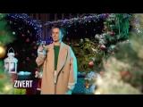 Zivert  - Встречаем Новый Год с Bridge TV Русский Хит