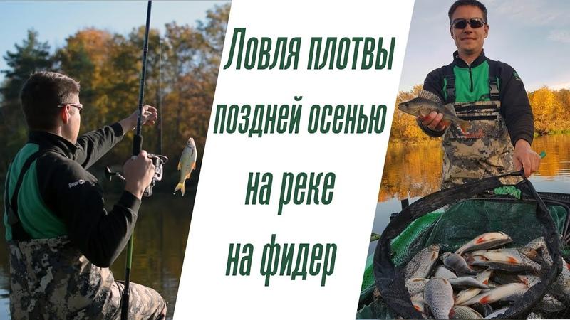 Ловля плотвы осенью на реке на фидер