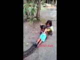 Лошадка по-индонезийски: маленькие девочки прокатились на живом питоне